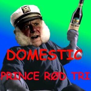 Prince RØd Tri Artist photo