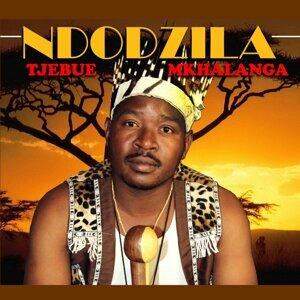 Tjebue Mkhalanga Artist photo
