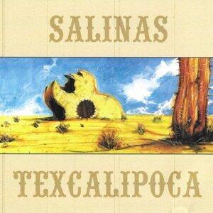 Salinas 歌手頭像