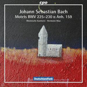 Rheinische Kantorei Artist photo