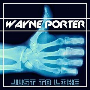Wayne Porter Artist photo
