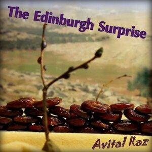 Avital Raz 歌手頭像