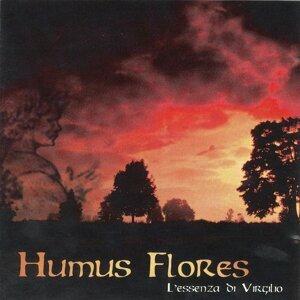 Humus Flores Artist photo