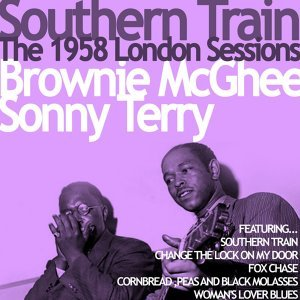 Brownie McGhee and Sonny Terry 歌手頭像