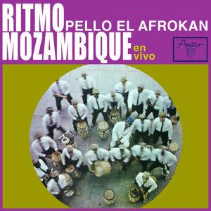 Pello el Afrokán Artist photo