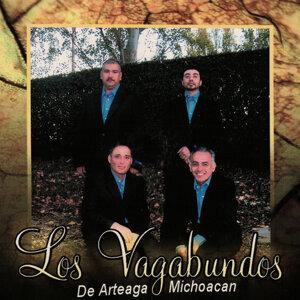 Los Vagabundos De Arteaga Michoacan Artist photo