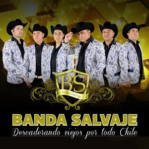 Banda Salvaje Artist photo