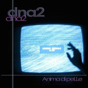 Dna2 Artist photo