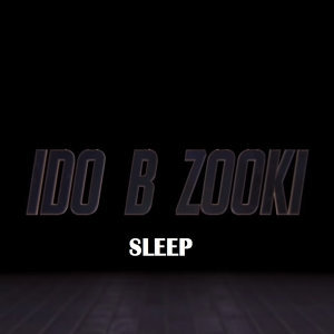 Ido B Zooki Artist photo