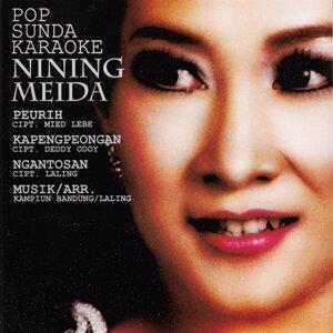 Nining Meida Artist photo