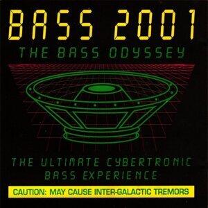 Bass 2001 Artist photo