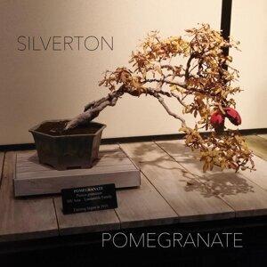 Silverton Artist photo