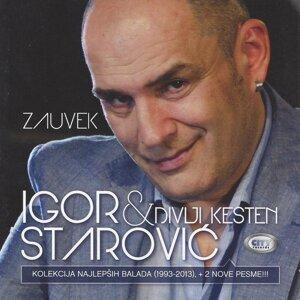 Igor Starovic & Divlji kesten Artist photo