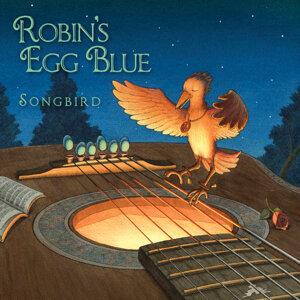 Robin's Egg Blue Artist photo