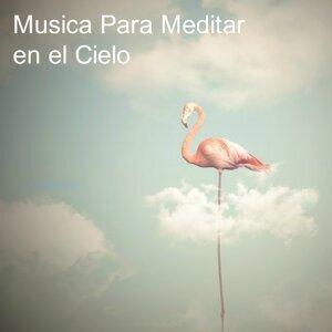 Meditación Interna, Musica Meditacion, Musica para Meditar Artist photo