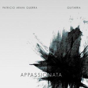 Patricio Araya Guerra Artist photo