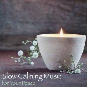 Meditation Relax Club