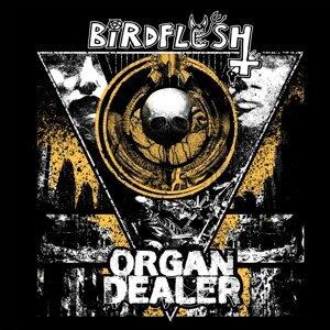 Birdflesh, Organ Dealer Artist photo