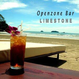 Openzone Bar 歌手頭像