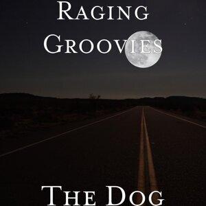 Raging Groovies Artist photo