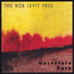 Rob Levit Trio Artist photo