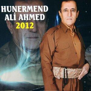 Ali Ahmed Artist photo