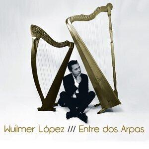 Wuilmer López Artist photo