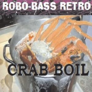 Robo-Bass Retro Artist photo
