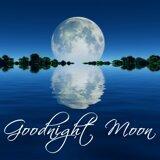 Sleeping Songs Lullabies