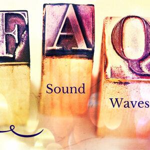 Sound Waves 歌手頭像
