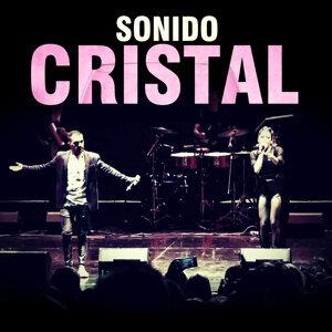 Sonido Cristal Artist photo