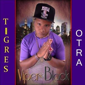 Viper Black Artist photo