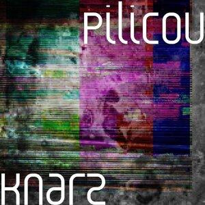 Pilicou Artist photo