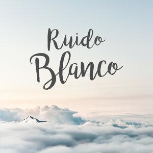 Ruido Blanco Artist photo