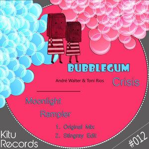 Bubblegum Crisis Artist photo