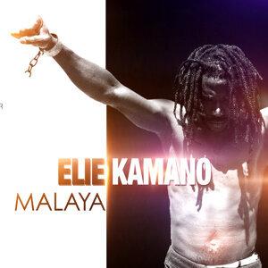 Elie Kamano Artist photo