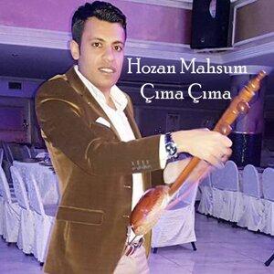 Hozan Mahsum Artist photo