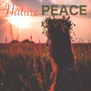 Nature Sounds, Nature Recordings, Nature Sounds Nature Music Artist photo