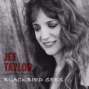 Jet Taylor Artist photo