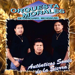 Orquesta Morales de Capacuaro Michoacan Artist photo