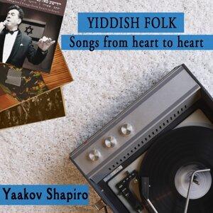 Yaakov Shapiro Artist photo