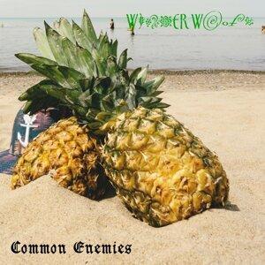 Common Enemies Artist photo