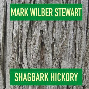 Mark Wilber Stewart Artist photo