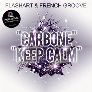 Flashart & French Groove Artist photo