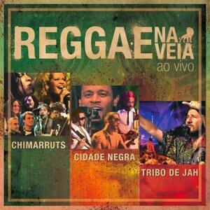 Chimarruts/Tribo De Jah/Cidade Negra 歌手頭像