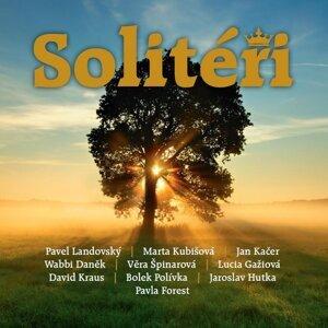 Soliteri 歌手頭像