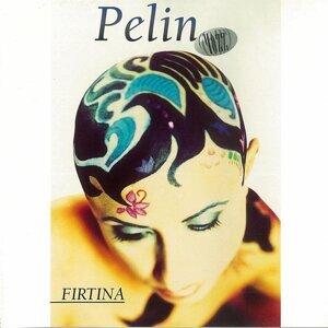 Pelin Ozer Alkan 歌手頭像