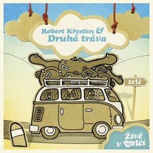 Robert Krestan A Druha Trava 歌手頭像