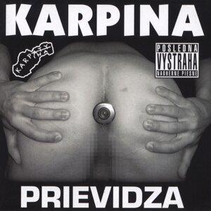 Karpina 歌手頭像