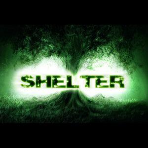 Shelter アーティスト写真